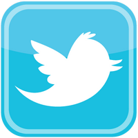twitter bird icon logo vector 400x400 Контакты